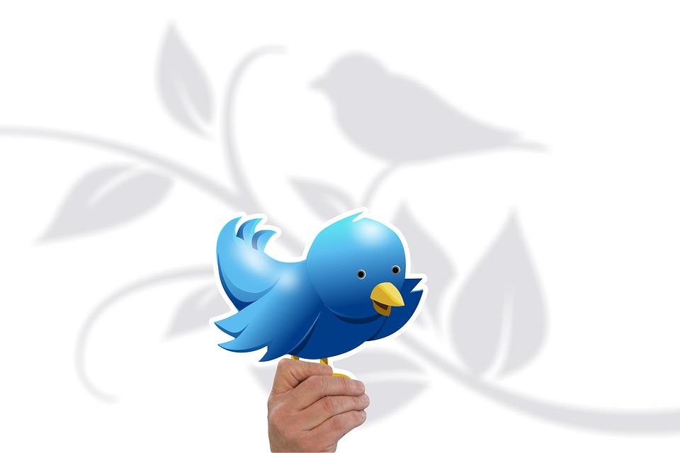 さえずり 鳥 チャープ アイコン シンボル 手 維持 プレゼンテーション 現在